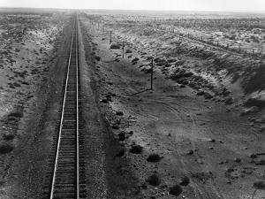 Railroad Tracks, 1939 by Dorothea Lange