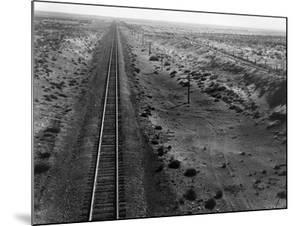 Railroad Tracks, 1939 by Dorothea Lange