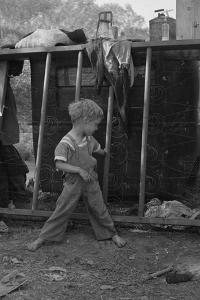 Son of destitute migrant, American River camp, near Sacramento, California, 1936 by Dorothea Lange