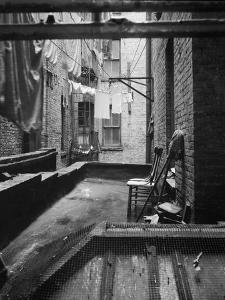 Tenement dwelling New York City, 1936 by Dorothea Lange