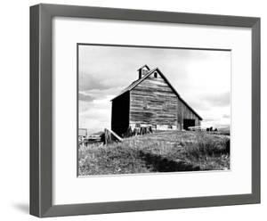The Barn of an Older Settler by Dorothea Lange