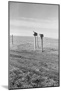 The Rolling Lands by Dorothea Lange