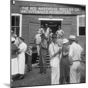 Tobacco auction in Douglas, Georgia, 1938 by Dorothea Lange