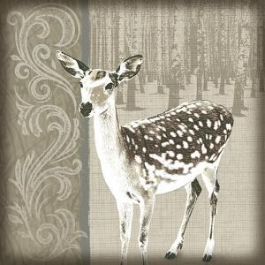 Timberland Fawn by Dorothea Taylor