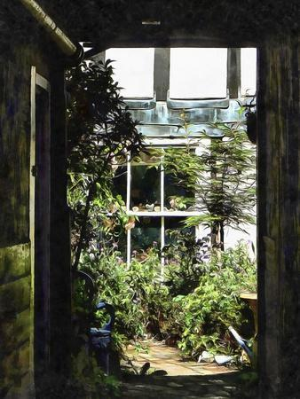The Secret Courtyard