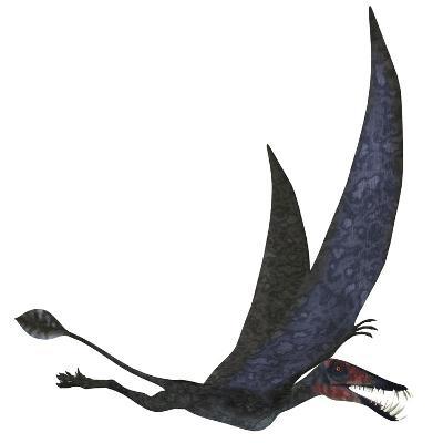 Dorygnathus Pterosaur from the Jurassic Period-Stocktrek Images-Art Print