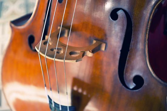 Double Bass-lachris77-Photographic Print