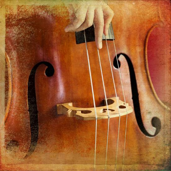 Double Bass-lachris77-Photographic Print