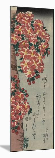 Double Cherry in Flower-Ando Hiroshige-Mounted Art Print