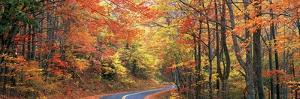 0299 October Road by Doug Cavanah