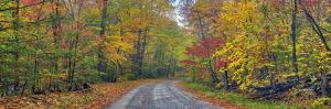 0627 Autumn Road by Doug Cavanah