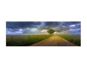 The Road Home by Doug Cavanah
