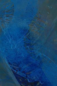Aqua Dance by Doug Chinnery