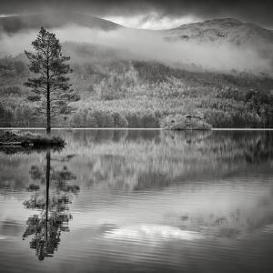 Cairngorm Reflection by Doug Chinnery