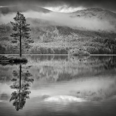 Cairngorm Reflection