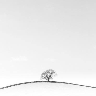 On the Crest by Doug Chinnery