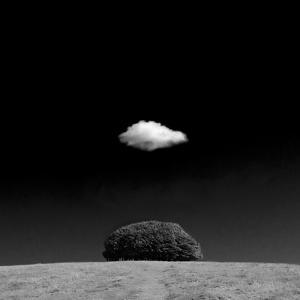 Scintilla Vii by Doug Chinnery