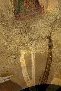 The Trees of Life IV by Doug Chinnery