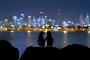 A Silhouette of Two Little Blue Penguins Standing on Rocks by Doug Gimesy