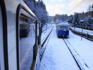 Cogwheel Railway Ascending Zugspitze, Bavarian Alps by Doug McKinlay
