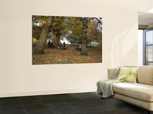 Greenwich Park in Autumn by Doug McKinlay