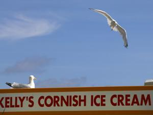 Ice-Cream Van and Seagulls by Doug McKinlay