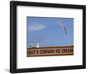 Ice-Cream Van and Seagulls by Doug McKinlay