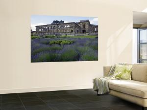 Remains of Whitley Court Manor House by Doug McKinlay