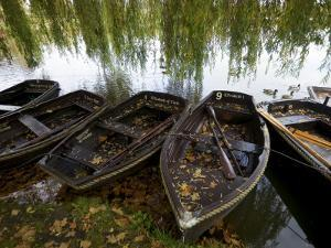 Row Boats Moored at Lakeside at Hever Castle by Doug McKinlay