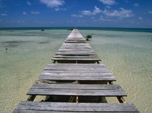 Wooden Pier with Broken Planks, Ambergris Caye, Belize by Doug McKinlay