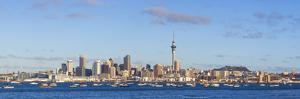 Auckland City Skyline & Waitemata Harbour by Doug Pearson