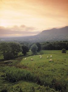 Ben Bulben, Yeats Country, Co. Sligo, Ireland by Doug Pearson