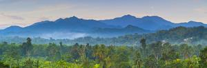 Blue Mountains, Portland Parish, Jamaica, Caribbean by Doug Pearson
