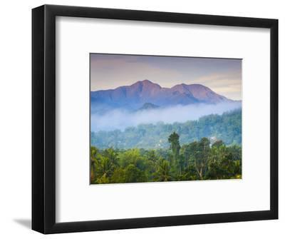 Blue Mountains, Portland Parish, Jamaica, Caribbean