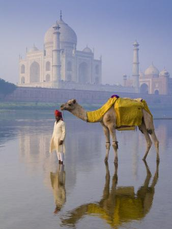Camal and Driver, Taj Mahal, Agra, Uttar Pradesh, India by Doug Pearson