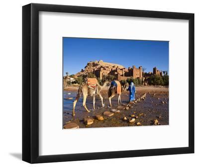 Camel Driver, Ait Benhaddou, Atlas Mountains, Morocco, Mr