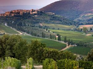 Castelnuovo Del'Abate, Tuscany, Italy by Doug Pearson