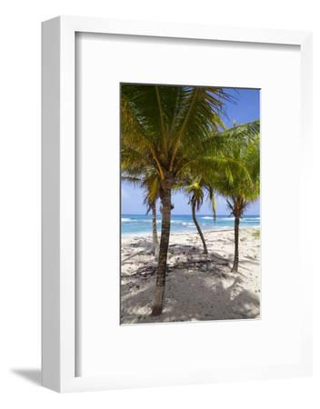 Long Bay, East Coast, Portland Parish, Jamaica, West Indies, Caribbean, Central America