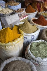 Spices, Jaipur, Rajasthan, India, Asia by Doug Pearson