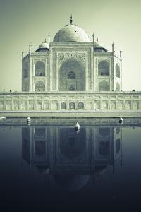 Taj Mahal, UNESCO World Heritage Site, Agra, Uttar Pradesh, India, Asia by Doug Pearson