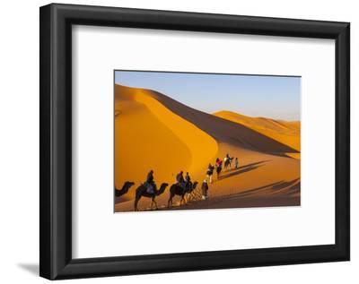 Tourists on Camel Safari, Sahara Desert, Merzouga, Morocco, North Africa, Africa