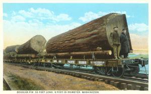 Douglas Fir Logs on Flatbeds, Washington