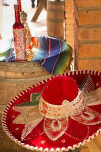 Canopy River, Tequila, Puerto Vallarta, Jalisco, Mexico by Douglas Peebles