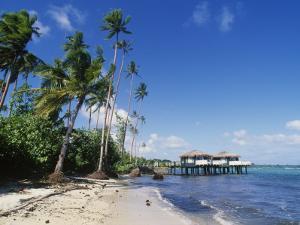 Coconuts Beach Club Resort, Apia, Samoa by Douglas Peebles