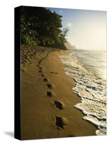 Footprints in Sand, Hanalei, Hawaii, USA by Douglas Peebles