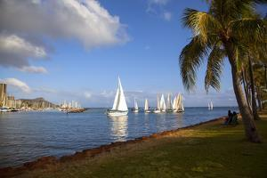 Friday Night Sailboat Races, Ala Wai Harbor, Waikiki, Honolulu, Oahu, Hawaii, USA by Douglas Peebles