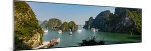 Halong Bay, Vietnam, Asia by Douglas Peebles