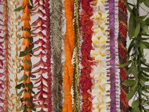 Hawaiian Flower Lei Strand by Douglas Peebles