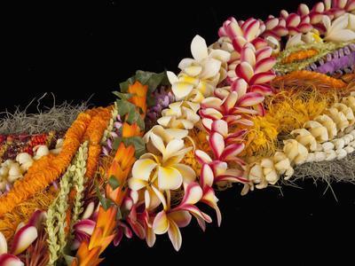 Hawaiian Flower Lei Strand