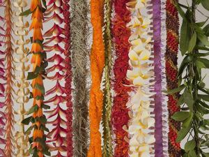 Hawaiian Flower Lei Strand by Douglas Peebles